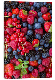 Canvas  colorful berries