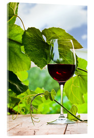 Acrylic print  glass with red wine in vineyard