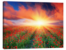 Canvas  Sunset over a field of red poppies