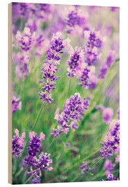 Wood  Lavender flowers