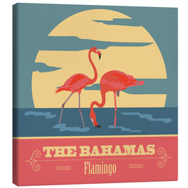 Canvas  The Bahamas - Flamingo
