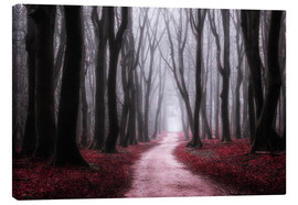 Canvas print  Red Reverie - tvurk photography