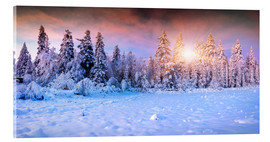 Acrylic print  Winter Sunrise in the Mountain Forest