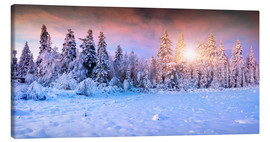 Canvas print  Winter Sunrise in the Mountain Forest