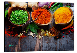 Aluminium print  Colorful spices diversity