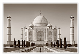 Premium poster  Taj Mahal in sunrise light