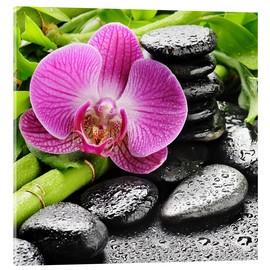 Acrylic glass  Zen stones and pink orchid