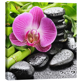 Canvas  Zen stones and pink orchid
