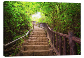 Canvas  Stairway to forest, Erawan national park