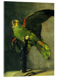 Acrylic print  The green parrot - Vincent van Gogh