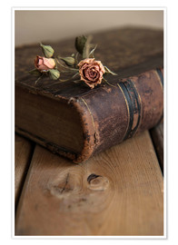 Premium poster Dry rose and old book