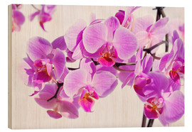 Wood print  Beautiful pink-magenta orchid