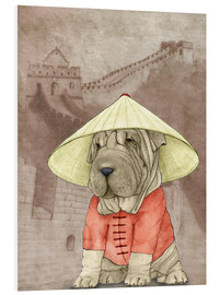 Forex  Shar pei With The Great Wall - Barruf