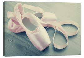 Canvas  Ballet Shoes