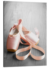 Alu-Dibond  pink ballet shoes