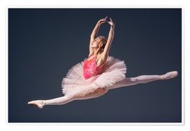 Premium poster Pink Tutu and Pointe Shoes