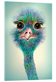 Acrylic glass  Bird Ostrich Stanislaw - siegfried2838