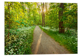 Foam board print  Wild Garlic Forest - Dave Derbis