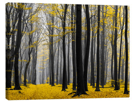 Canvas  Golden Grove - tvurk photography