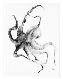 Poster  Octopus - Alexis Marcou