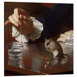 Aluminium print  Boy with a Flying Squirrel (Detail) - John Singleton Copley