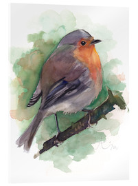 Acrylic print  Red Robin, bird watercolor - Verbrugge Watercolor