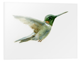 Foam board print  Hummingbird - Verbrugge Watercolor