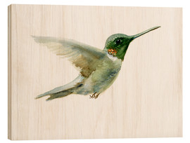 Wood  Hummingbird - Verbrugge Watercolor