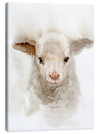Canvas print  Lamb - Verbrugge Watercolor