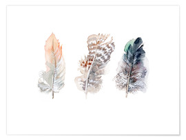 Premium poster  3 feathers - Verbrugge Watercolor