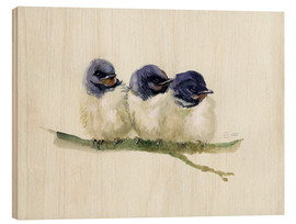 Wood  3 little swallows - Verbrugge Watercolor