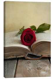 Canvas print  Red rose and old open book - Jaroslaw Blaminsky