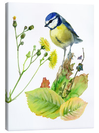 Canvas print  Blue Tit Bird and Sowthistle - Verbrugge Watercolor