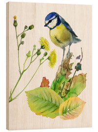 Wood print  Blue Tit Bird and Sowthistle - Verbrugge Watercolor