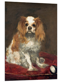 Forex  A King Charles Spaniel - Edouard Manet