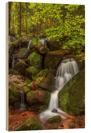 Wood print  Waterfall in the forest - Thomas Herzog
