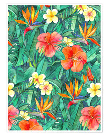 Premium poster  Tropical garden - Micklyn Le Feuvre