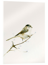 Acrylic print  Long-tailed tit - Dearpumpernickel