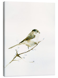 Canvas  Long-tailed tit - Dearpumpernickel