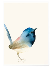 Premium poster Dark blue bird