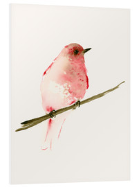 Foam board print  Rasberry red bird - Dearpumpernickel