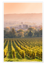 Premium poster Church and vineyards in the Rhine valley
