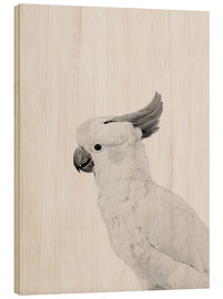 Wood print  Feathered rebel - Finlay and Noa