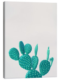Finlay and Noa - Turquoise cactus