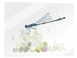 Acrylic glass  Dragonfly Building - Verbrugge Watercolor