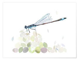 Poster  Dragonfly Building - Verbrugge Watercolor