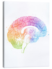 Canvas print  Brain anatomy - Mod Pop Deco