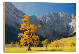 Wood print  Autumn in Alps - Dieter Meyrl