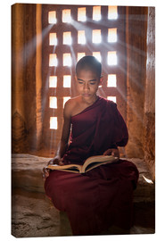 Canvas  Young Burmese monk in meditation at the monastery - Jan Christopher Becke