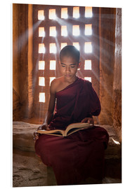 Foam board print  Young Burmese monk in meditation at the monastery - Jan Christopher Becke